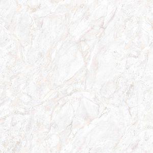 4218 RIMINI